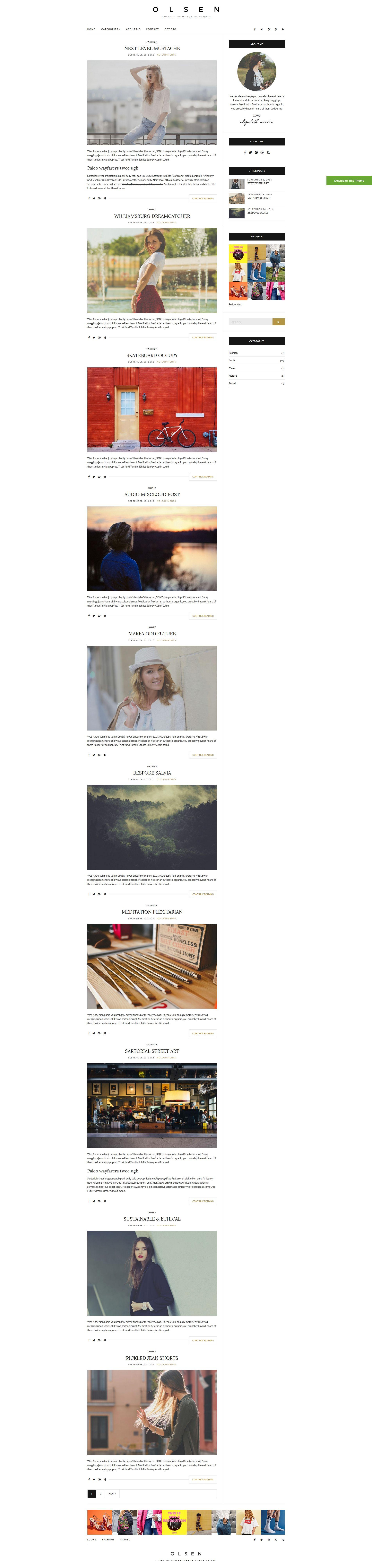 Olsen Light - wordpress šablona od cssigniter zdarma